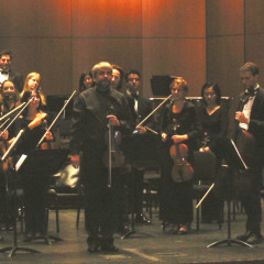 Polish Chamber Orchestra