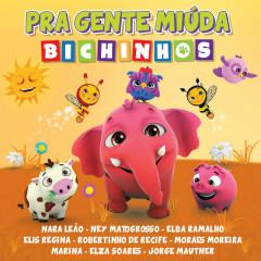 Robertinho De Recife