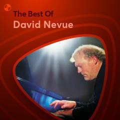 Những Bài Hát Hay Nhất Của David Nevue - David Nevue