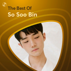 Những Bài Hát Hay Nhất Của So Soo Bin