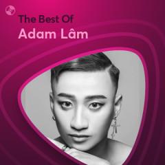 Những Bài Hát Hay Nhất Của Adam Lâm - Adam Lâm