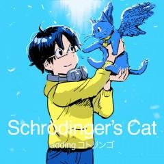 Schrödinger's Cat adding kotringo