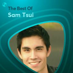 Những Bài Hát Hay Nhất Của Sam Tsui - Sam Tsui
