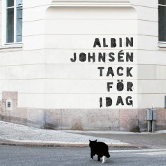 Albin Johnsén