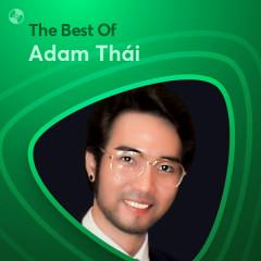Những Bài Hát Hay Nhất Của Adam Thái