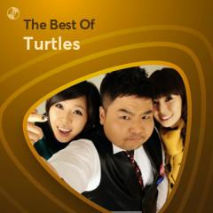 Những Bài Hát Hay Nhất Của Turtles - Turtles