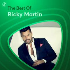 Những Bài Hát Hay Nhất Của Ricky Martin - Ricky Martin