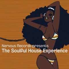 The Soulful House Experience - Various Artists