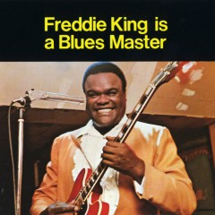 Is A Blues Master - Freddie King