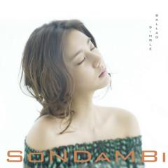 The invisible man - Son Dam Bi