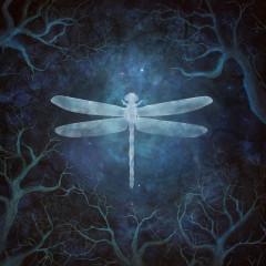 Odonata - 20th Anniversary Edition - Amethystium
