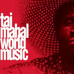 World Music - Taj Mahal