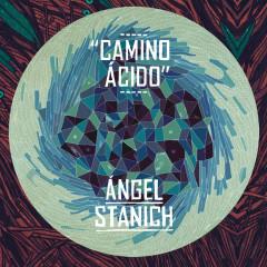 Camino Acido - Angel Stanich
