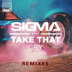 Cry (Remixes) - Sigma, Take That
