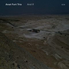 And If - Anat Fort Trio