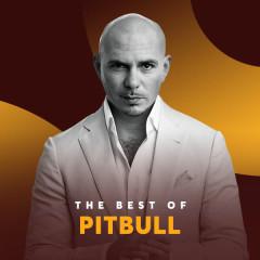 Những Bài Hát Hay Nhất Của Pitbull