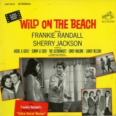 Wild On the Beach (Original Motion Picture Soundtrack)