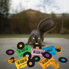 Squirrel Tape Instrumentals, Vol. 1 - Evidence