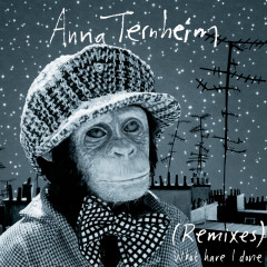 What Have I Done (Remixes) - Anna Ternheim