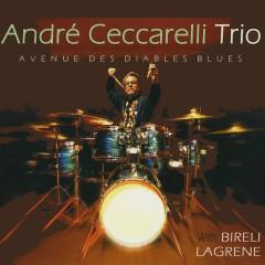 Avenue des diables blues (feat. Biréli Lagrène & Joey DeFrancesco)