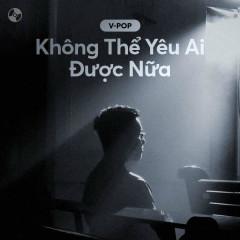 Không Thể Yêu Ai Được Nữa - Various Artists