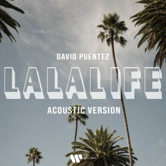 LaLaLife (Acoustic Version) - David Puentez