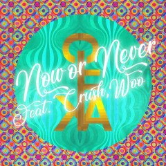 Now Or Never (Single) - CIFIKA