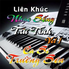 Bài hát Liên Khúc: Nhạc Sống Trữ Tình Vol.1 (EP) - Trường Sơn