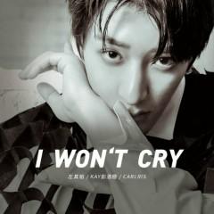 I Won't Cry (Single)
