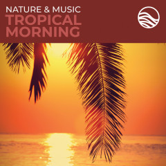 Nature & Music: Tropical Morning - David Arkenstone