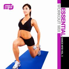 Essential Workout Mix: Dance Hits! Vol. 3 - Various Artists