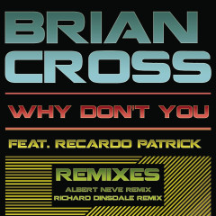 Why Don't You (Remixes) - Brian Cross