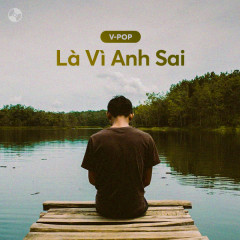 Là Vì Anh Sai - Various Artists