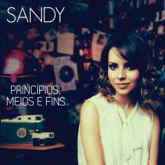 Princípios, Meios E Fins - Sandra Bullock