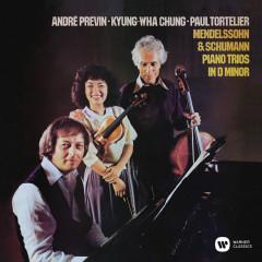 Mendelssohn & Schumann: Piano Trios in D Minor - Andre Previn, Kyung-wha Chung, Paul Tortelier