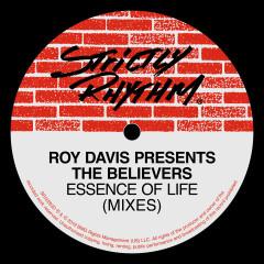 Essence Of Life - Roy Davis, The Believers