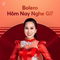 Bolero Hôm Nay Nghe Gì? - Various Artists