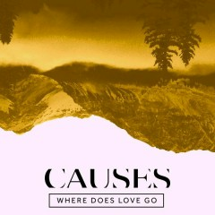 Where Does Love Go - Causes
