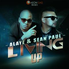 Living Up - Sean Paul, Alaye