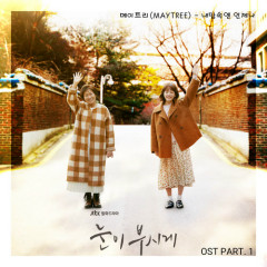 The Light in Your Eyes OST Part.1 - Maytree