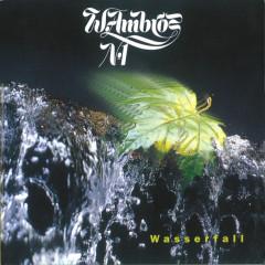 Wasserfall - Wolfgang Ambros