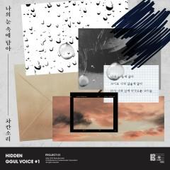 Hidden Ggul Voice#1 (Single)