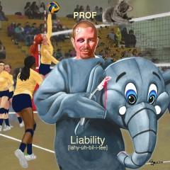 Liability - Prof