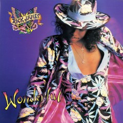 Wonderful - Rick James