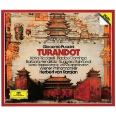 Puccini: Turandot - Katia Ricciarelli, Placido Domingo, Barbara Hendricks, Ruggero Raimondi, Wiener Philharmoniker