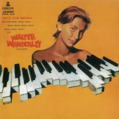 Feito Sob Medida - Walter Wanderley