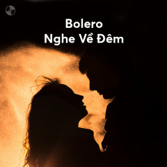Bolero Nghe Về Đêm - Various Artists