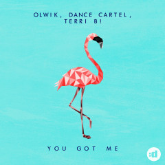 You Got Me - OLWIK, Dance Cartel, Terri B!