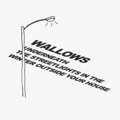 Underneath The Streetlights In The Winter Outside Your House (Single) - Wallows