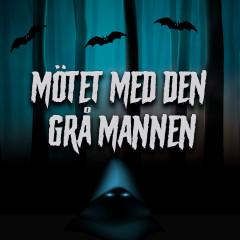 Mötet med den grå mannen - Håkan Serner